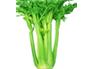 芹菜:维持血压稳定